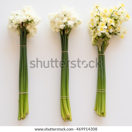 High angle view of three bunches of flowers on white table, erlicheer daffodils and jonquils