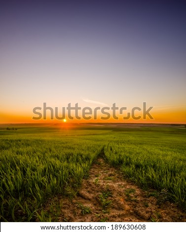 High definition range Landscape with Brassica napus rapes in it and a beautiful sky - stock photo