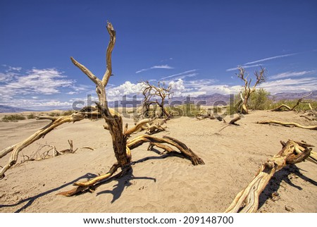 High Dynamic Range (HDR) image of Mountains, dead tree and desert landscape with clouds. Death Valley National park, USA - stock photo