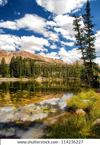 High mountain lake clouds, blue sky's, lily pads, rocky mountains/Vertical of a High Alpine Lake