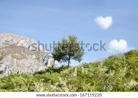 High mountain landscape with a large rock, soil filled with ferns and a tree. In the sky two heart shaped clouds - stock photo