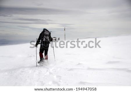 High mountaineers - stock photo