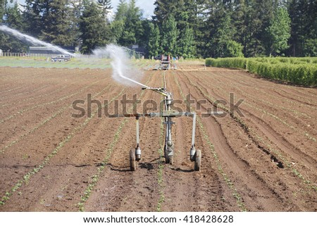High pressure spray shoots from an irrigation nozzle onto freshly planted crops/High pressure Irrigation /High pressure spray shoots from an irrigation nozzle.  - stock photo
