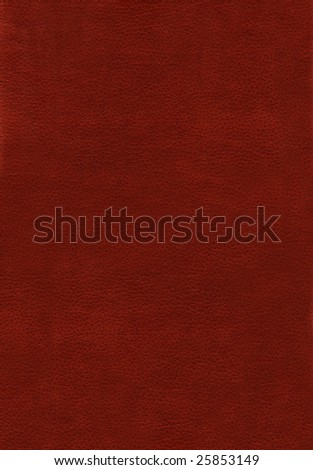 High quality scanned leather texture - stock photo