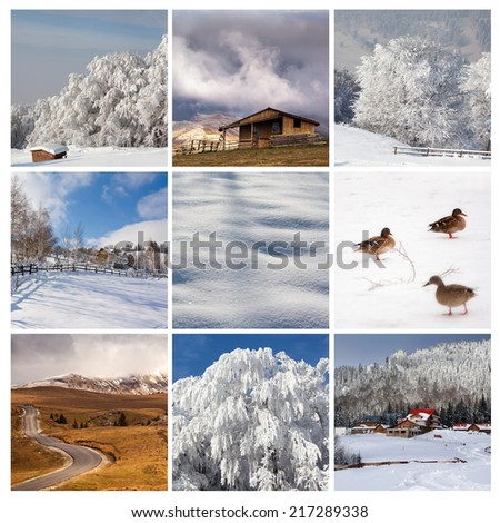 High Quality Winter collage  - stock photo