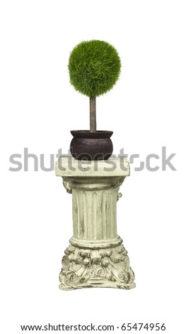 High regard for nature shown by a potted tree on a stone formal pedestal for raising up an item of importance - path included - stock photo