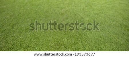 High resolution astro articifial football pitch, it was stiched from 3 shifts from the 24mm tilt and shift lenses at f10