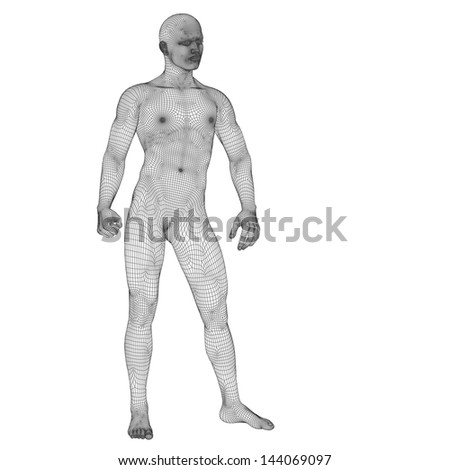 High resolution concept or conceptual 3d male or man standing over a white  background as a metaphor for anatomy,body,biology,medicine,muscle,mesh,muscular,anatomical,science,education,sport or x-ray