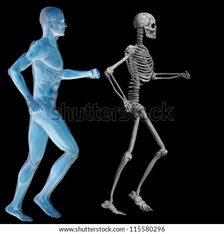High resolution conceptual 3D human ideal for anatomy,medicine and health designs, isolated on black background. It is a man made of a skeleton and a transparent blue body as in a x-ray