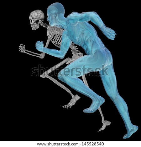 High resolution conceptual 3D human ideal for anatomy,medicine and health designs, isolated on black background. It is a man made of a skeleton and a transparent body as in a x-ray.A set or group - stock photo