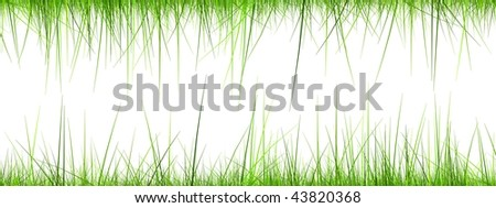 High resolution 3d green grass frame isolated on a white background - stock photo