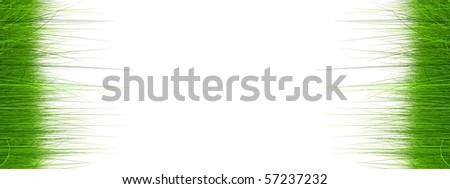 High resolution 3d green grass isolated on a white background - stock photo
