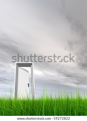 High resolution 3D white door opened in grass to a nice sky background