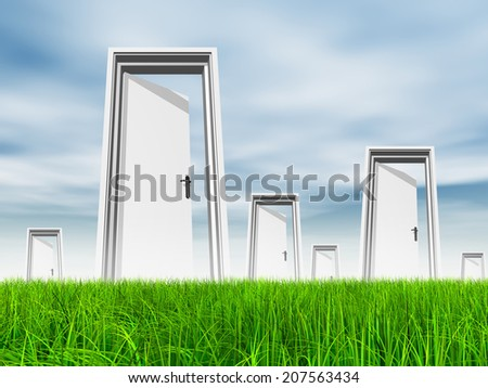 High resolution green, fresh and natural 3d conceptual grass over a blue sky background, a opened door at horizon ideal for religion, home, recreation, faith, business, success, opportunity or future