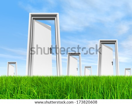 High resolution green, fresh and natural 3d conceptual grass over a blue sky background, and opened doors at horizon ideal for religion,home,recreation, faith, business, success, opportunity or future