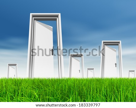 High resolution green, fresh and natural 3d conceptual grass over a blue sky background, opened doors at horizon ideal for religion, home, recreation, faith, business, success, opportunity or future