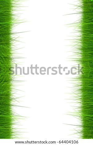 High resolution green grass isolated on a white background - stock photo