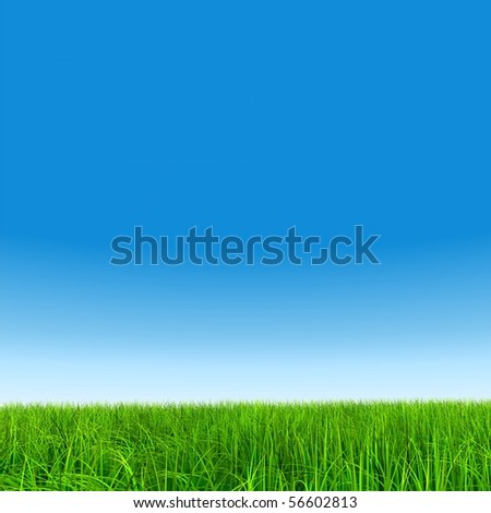 High resolution green grass over a blue sky background - stock photo