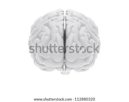 High resolution image. 3d rendered illustration. 3d human brain. - stock photo
