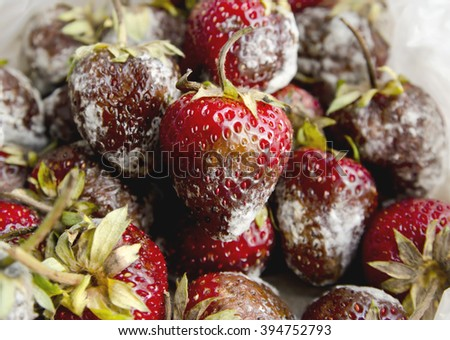 High resolution image of rotten strawberries