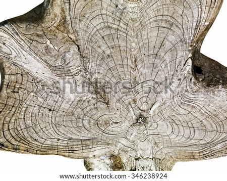 High rezolution wooden texture on white background - stock photo