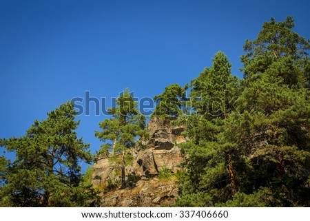 high rock overgrown with pines - stock photo