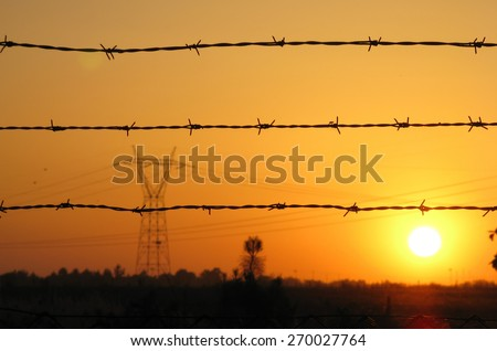 High tension electrical power lines and pylon tower against sky. Modern industrial energy line. Sunset landscape - stock photo