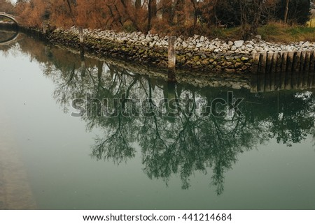 High trees reflec in the green water of a channel - stock photo