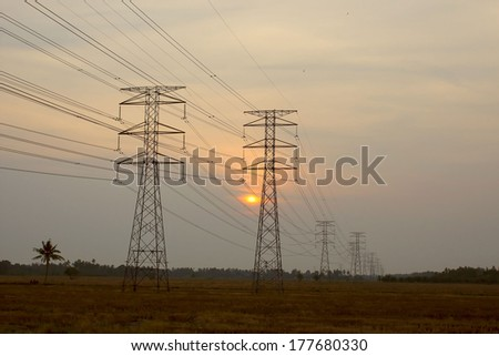 High voltage electrical towers in the rice fields at sunset - stock photo