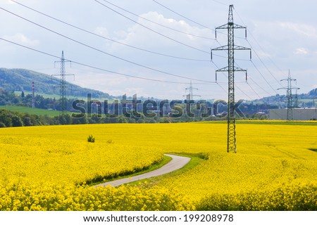 High-voltage electricity pylons in yellow oilseed rape field with small mountains in the background
