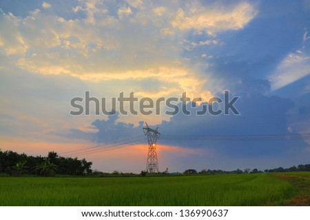 high voltage post over the rice field