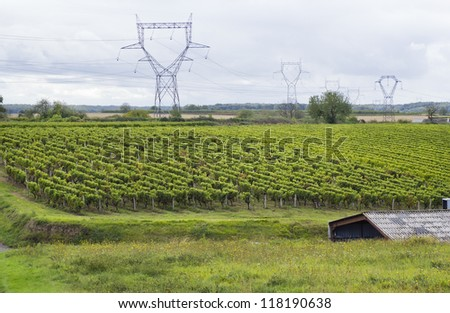 High-voltage power transmission lines of the French vineyards. Agriculture close to the industry concept. Cloudy autumn day, Soft art focus