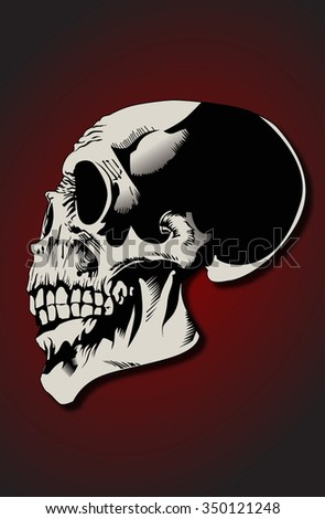 Highly detailed and stylish illustration of a skull