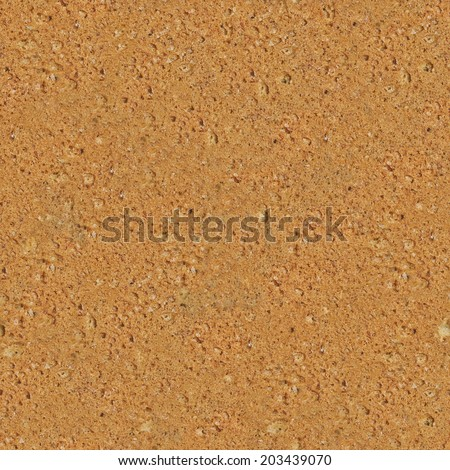 Highly detailed close-up macro Biscuit Texture - stock photo