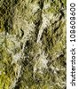 Highly detailed mossy rock texture for background - stock photo
