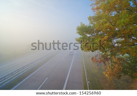 highway, fog, autumn, foliage - stock photo