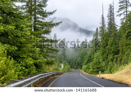 Highway in the fog through redwood forest - stock photo
