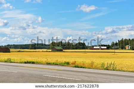 Highway next to field with ripe rye - stock photo