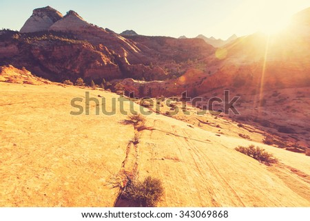 Hike in Zion National Park - stock photo