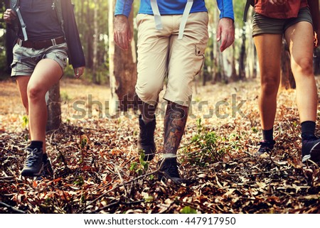 Hiker Group Forest Walking Concept - stock photo
