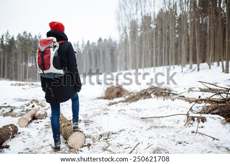 hiker in a winter forest - stock photo