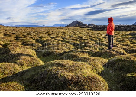 Hiker in an old moss-covered lava field at Krafla volcanic area in Iceland - stock photo