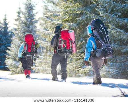 Hiker in winter mountains - stock photo