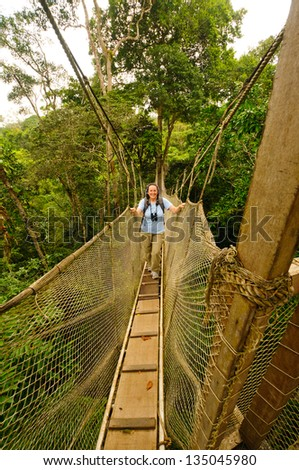 Hiker on a Canopy walkway near the Napo River in the rain forest in Peru - stock photo