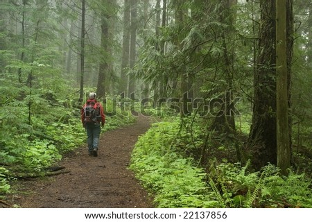 hiker on wide path