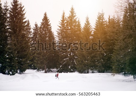 Hiker,traveler woman walking on snow in forest at sunset