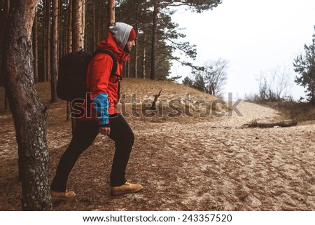 Hiker walks across forest  - stock photo