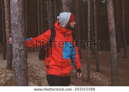 Hiker walks  through the forest - stock photo