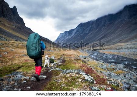 Hiker wih siberian husky in the Nallo Valley in Lapland - Sweden - stock photo