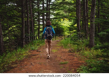 Hiker woman with backpack walking on path in summer forest, rear view - stock photo